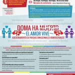 Immigrant-Law-Group---Infographic-DOMA-spanish